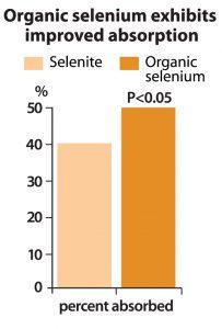 elevate-se---selenium-chart