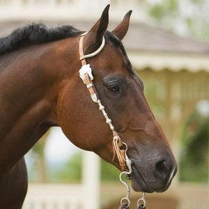 Selenium-How-Much-Is-in-Your-Horses-Diet