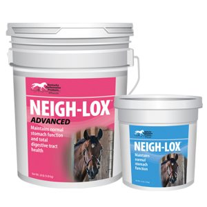 What-is-the-difference-between-Neigh-Lox-original-and-Neigh-Lox-Advanced