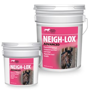 KPP-Announces-Neigh-Lox-Advanced-Dont-Let-Poor-Digestive-Tract-Health-Sideline-Your-Horse2