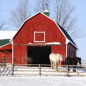 Preparing-your-feed-room-and-hayloft-for-the-winter