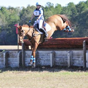 Team-Have-At-It-Ocala-Horse-Trials-Winter-II-Update