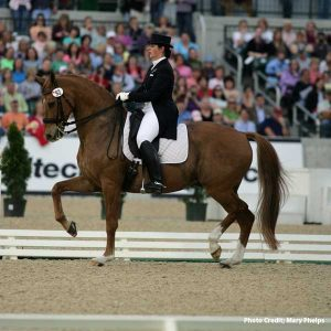 10-Tips-to-Improve-Your-Dressage-Test