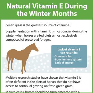 Natural-Vitamin-E-During-the-Winter-Months-14-201tb