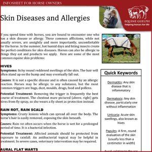 Skin-Diseases-and-Allergies-in-Horses
