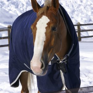 Wacky-Winter-Weather-Horse-Blanketing-Tips