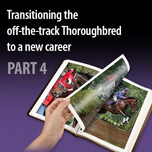 Transitioning-the off-the-track-Thoroughbred-to-a-new-career