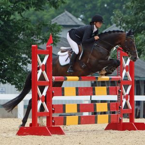 Elevate-Event-Team-Rider-QA-with-Brigitte-Aickelin