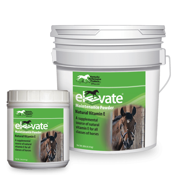 Elevate-Maintenance-Powder-natural-vitamin-e-supplement-horses copy1