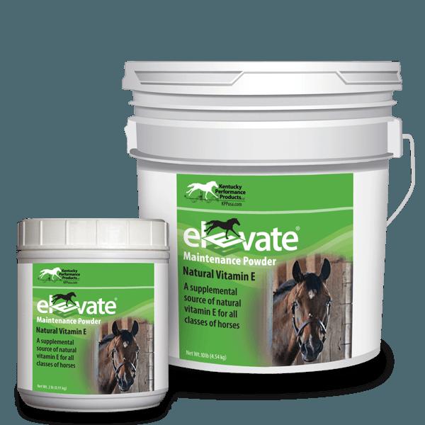 Elevate-Maintenance-Powder-natural-vitamin-e-supplement-horses copy1