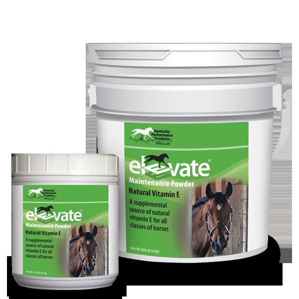 Elevate-Maintenance-Powder-natural-vitamin-e-supplement-horses