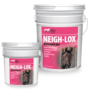 Neigh-Lox-Advanced-ulcer-digestive-aid-supplement