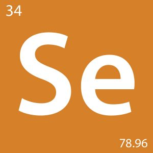 Selenium-An-Essential-Minera-for-horses