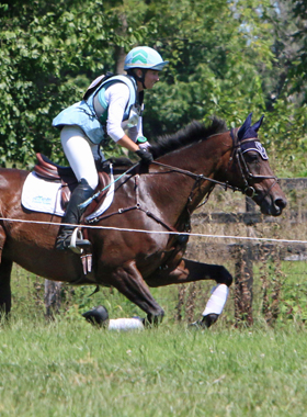 off-the-track-ottb-supplements