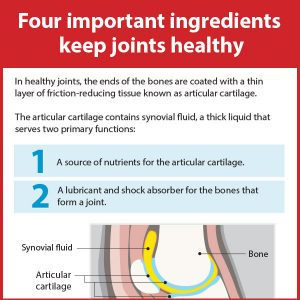 Four-important-ingredients-keep-joints-healthy-17-111tb