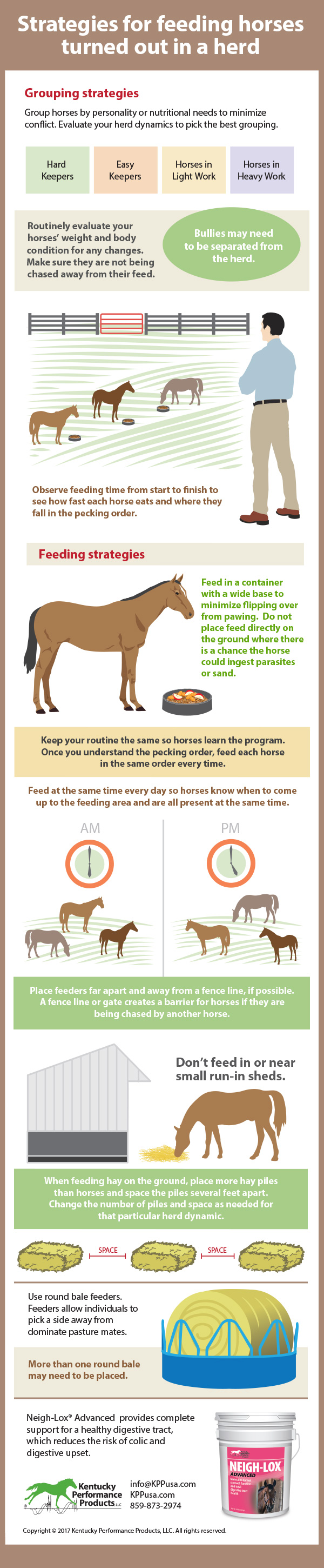 Strategies-for-feeding-horses-turned-out-in-a-herd-17-154