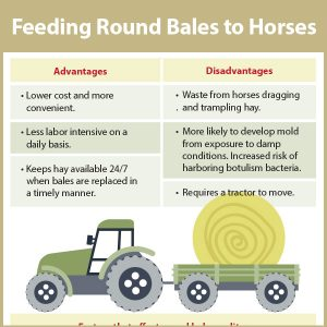 Tips-for-feeding-round-bales-to-horses-17-101tb
