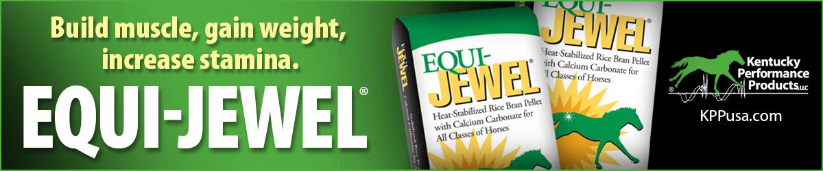 1200x250-Equi-Jewel-ad-3.jpg