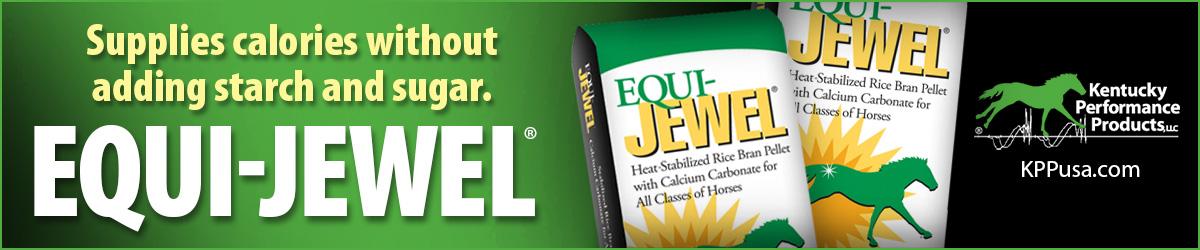 1200x250-Equi-Jewel-ad-4.jpg
