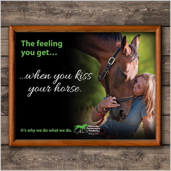 600x600-horse-kiss-picture