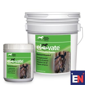 Eventing-Nation-Elevate-Review