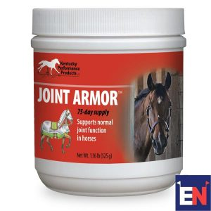 Eventing-Nation-Joint-Armor-Review