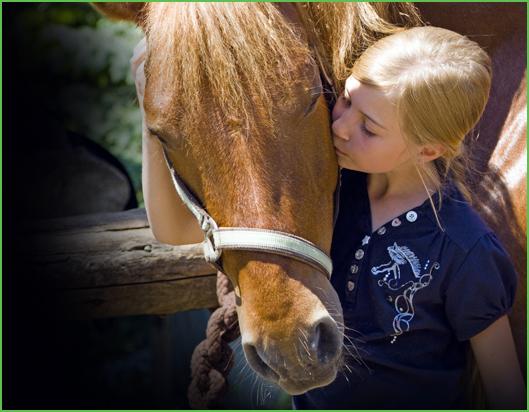 13-Hug-Your-Horse-Western.jpg