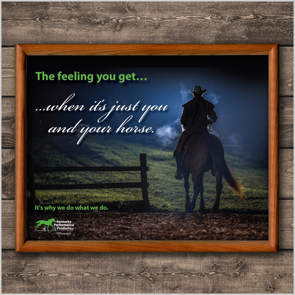 600x600-picture-you-and-your-horse-western