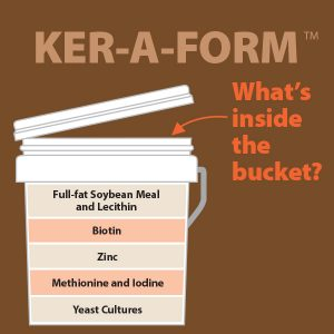 Ker-a-Form-Whats-in-the-bucket-17-188tb