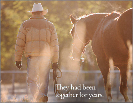 Love-Story-7-Making-Champion-Western