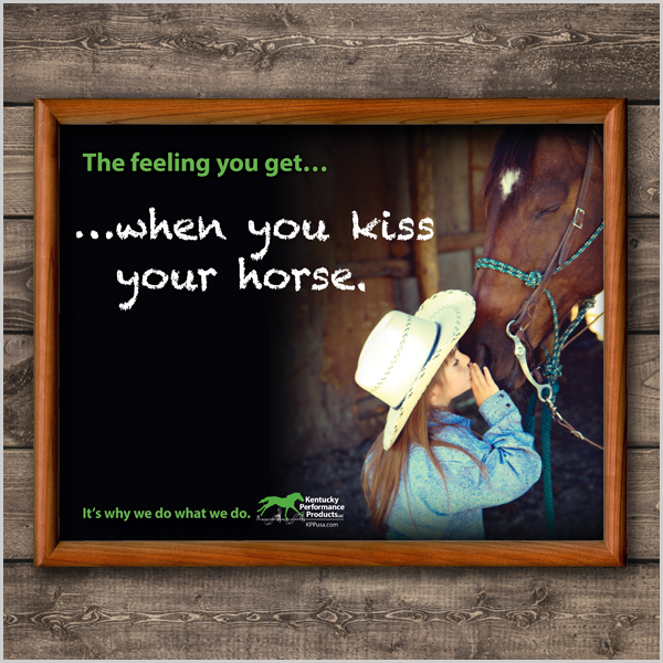 600x600-kiss-horse-western-picture.jpg