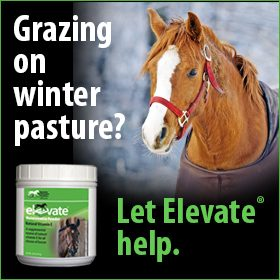 280x280-Elevate-Maintenance-Powder-Winter-Pasture