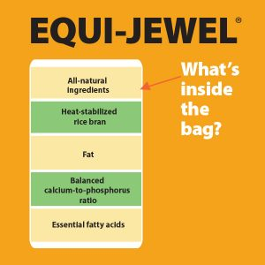 Equi-Jewel-Whats-Inside-The-Bag-18-115TB