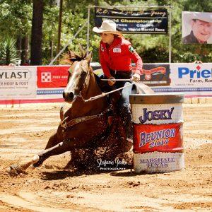 Equi-Jewel-fuels-top-performance-horses