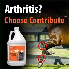 280x280-Contribute-Omega-3-Fatty-Acids-Arthritis