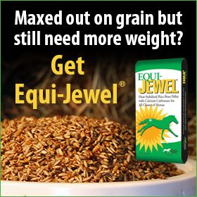 280x280-Equi-Jewel-Rice-Bran-Grain