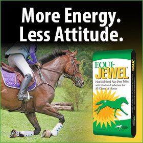 280x280-Equi-Jewel-Rice-Bran-More-Energy-Attitude-English