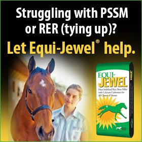 280x280-Equi-Jewel-Rice-RER-Tying-Up