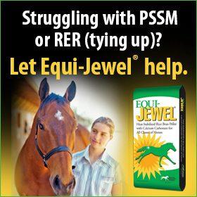 280x280-Equi-Jewel-Rice-RER-Tying-Up