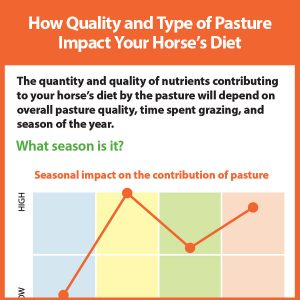 How-Quality-and-Type-of-Pasture-Impact-Your-Horses-Diettb18-164