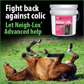 280x280-neigh-lox-advanced-colic