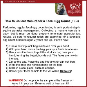 How-to-Collect-Manure-for-a-Fecal-Egg-Count