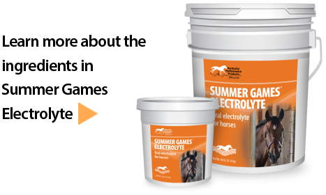 Summer-Games-Electrolyte-supplement-horses-467x280