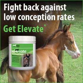 280x280-Elevate-natural-vitamin-e-conception-rates