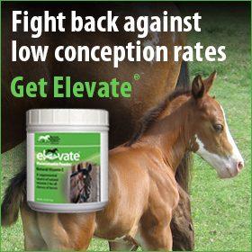 280x280-Elevate-natural-vitamin-e-conception-rates