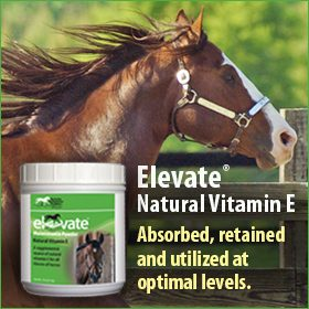 280x280-Elevate-natural-vitamin-e-highly-bioavailable-optimal-levels