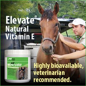 280x280-Elevate-natural-vitamin-e-highly-bioavailable-vet-recommended