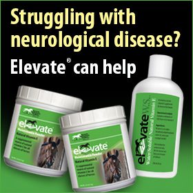 280x280-Elevate-natural-vitamin-e-neurological-disease