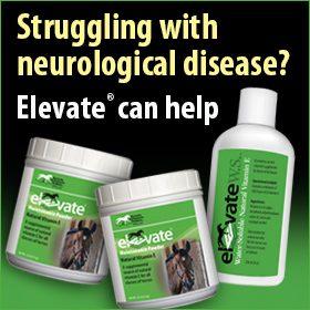 280x280-Elevate-natural-vitamin-e-neurological-disease