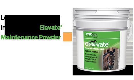 Elevate-Natural-Vitamin-E-467x280